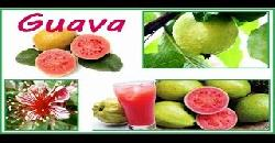 Health Benefits of Guava - Cancer, Anti Ageing, Diabetes, Blood Pressure