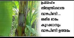 വാഴപിണ്ടിയുടെ ഗുണങ്ങള് Banana Stem Health Benefits