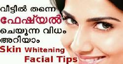 നിത്യ യൗവനത്തിനായ് ഹോം ഫേഷ്യല് How to Do Facial at Home